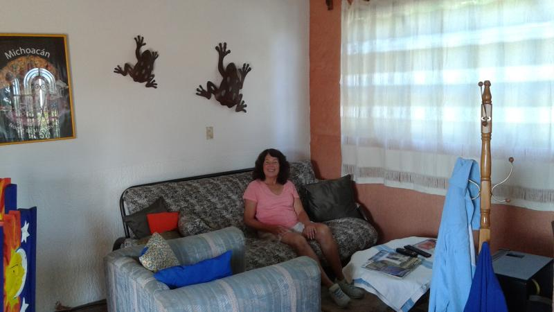 Living area, TV is in front of guest shown.