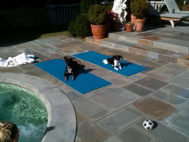 yoga bord de la piscine par le bain à remous.