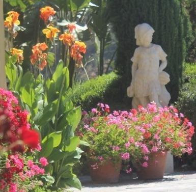 Jardin en fleur. On dirait que ce toute l'année en Californie. Merci au Créateur.