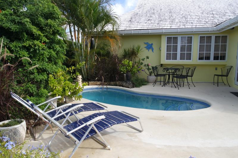 #5 Dayrells Court, vacation rental in Hastings
