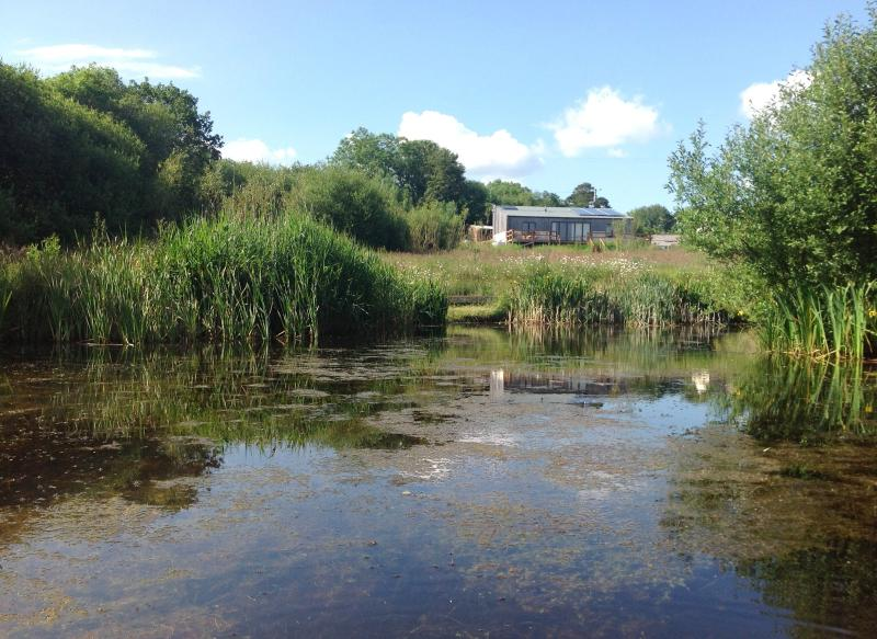 Looking at Balebarn Lodge, across the wildlife pond