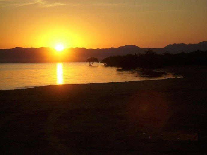 Not only our sunsets are spectacular and famous, this is a beautiful sunrise at our beach