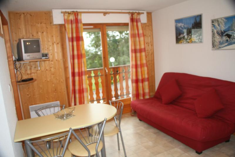 studio entre ciel et lac, holiday rental in Thollon-les-Memises
