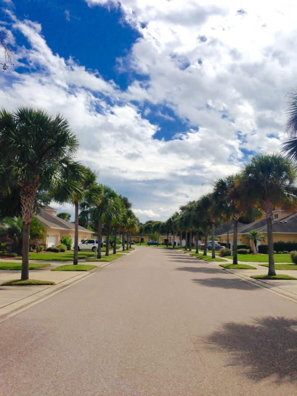 Palm tree lined quiet golf community with heated pool