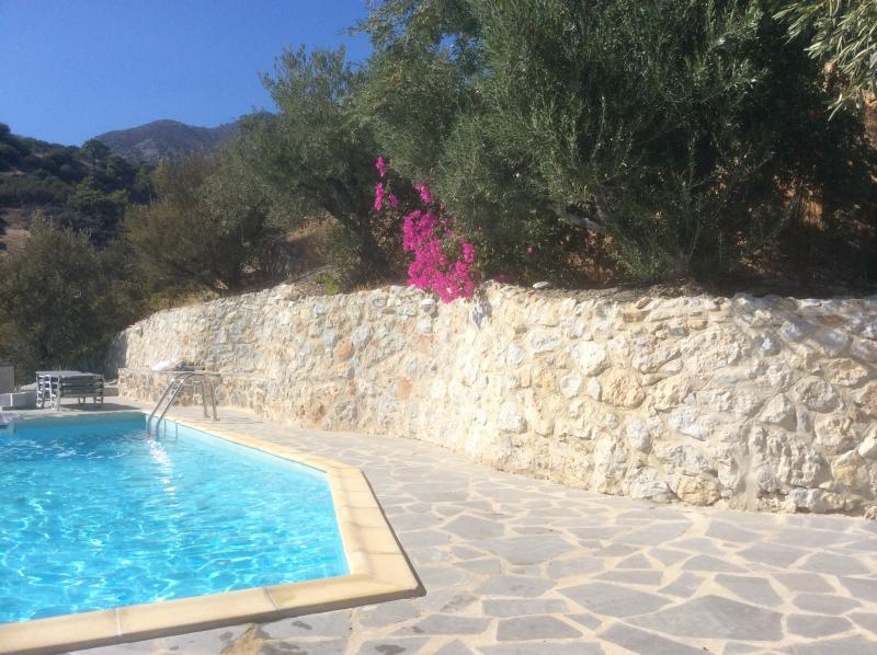 (Partly) surrounded by beautiful flowers and olive trees