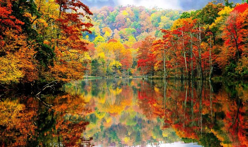 The fall is such a wonderful time of year to get outdoors and enjoy beautiful nature!