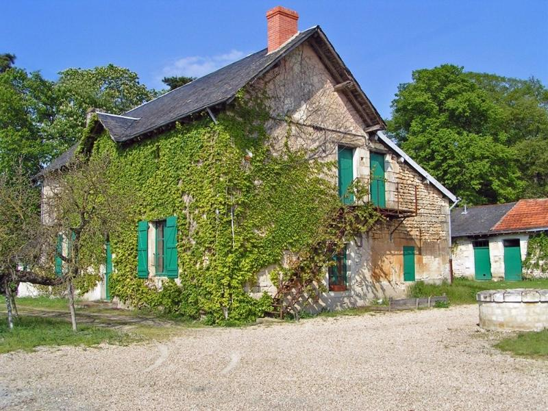 Grand gite dans le parc d'un château de la Loire., vacation rental in Berrie
