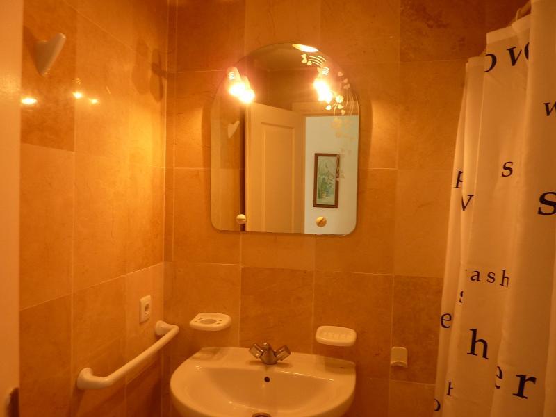 Main Bathroom / Shower Room