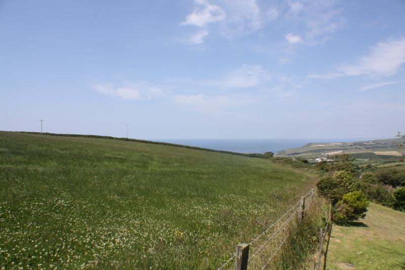 The view from Little Pol's garden