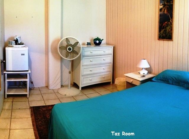 Taz room