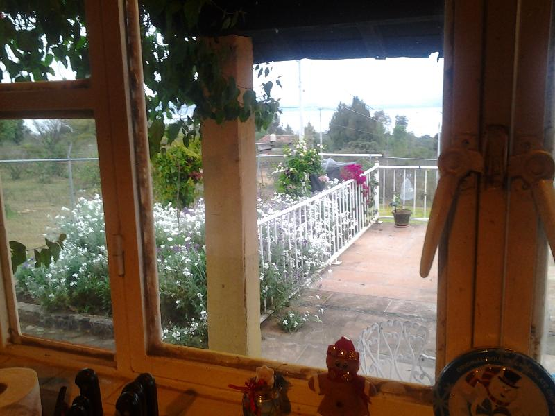 Terrace and small front gardfen, viwed from kitchen window.