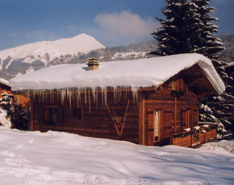 Chalet Hiver - Winter