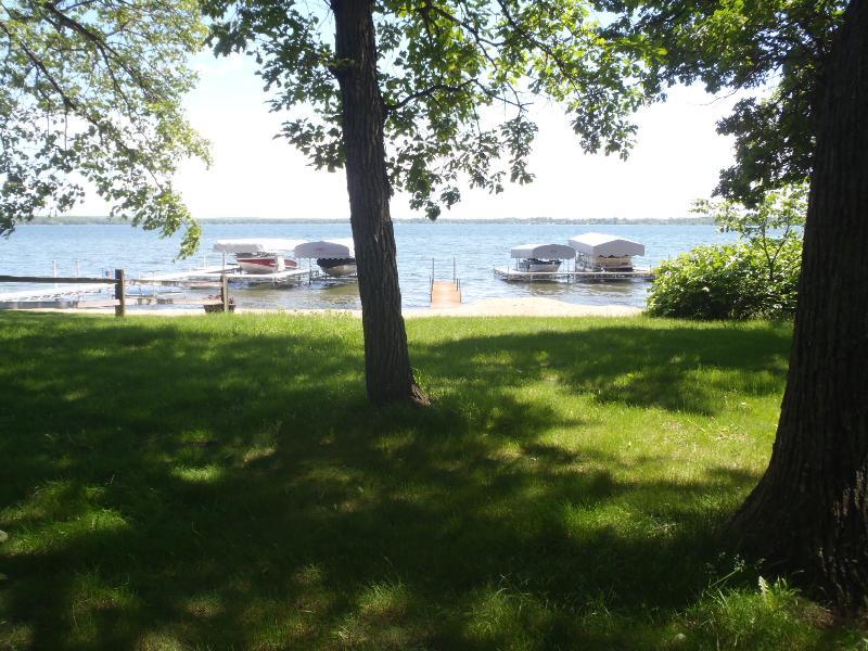 Árbol lleno de césped de sombra junto al lago