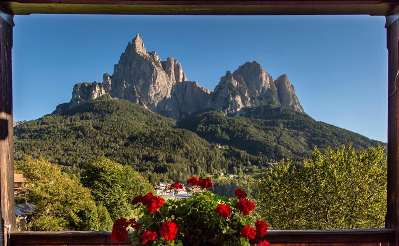 View in VILLA ERNA Santner Euringer the Schlernmassiv
