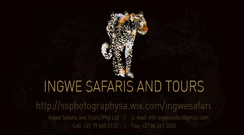 Ingwe Safaris and Tours, holiday rental in Rivonia