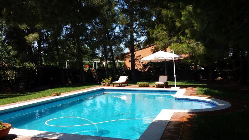piscina con 8 chaises longues (tumbonas)