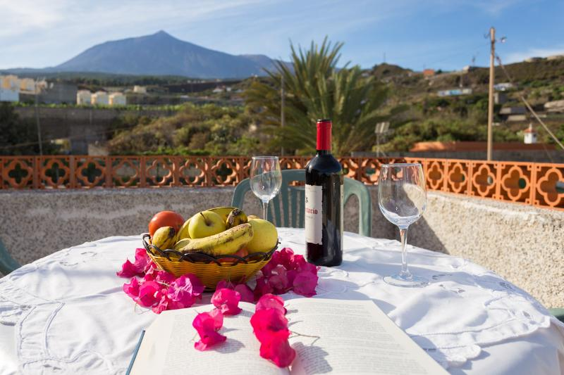 Pretty apartment in rural Tenerife, holiday rental in Icod de los Vinos