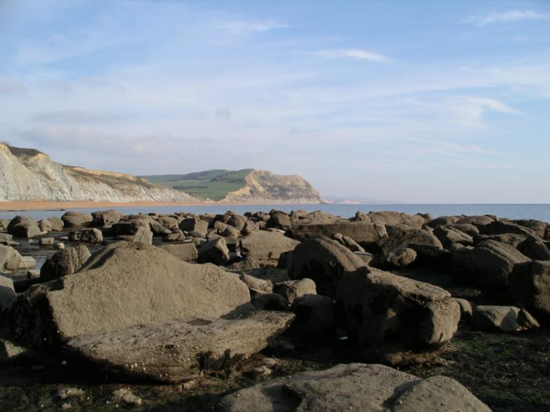 Seatown beach is a great place to collect fossils