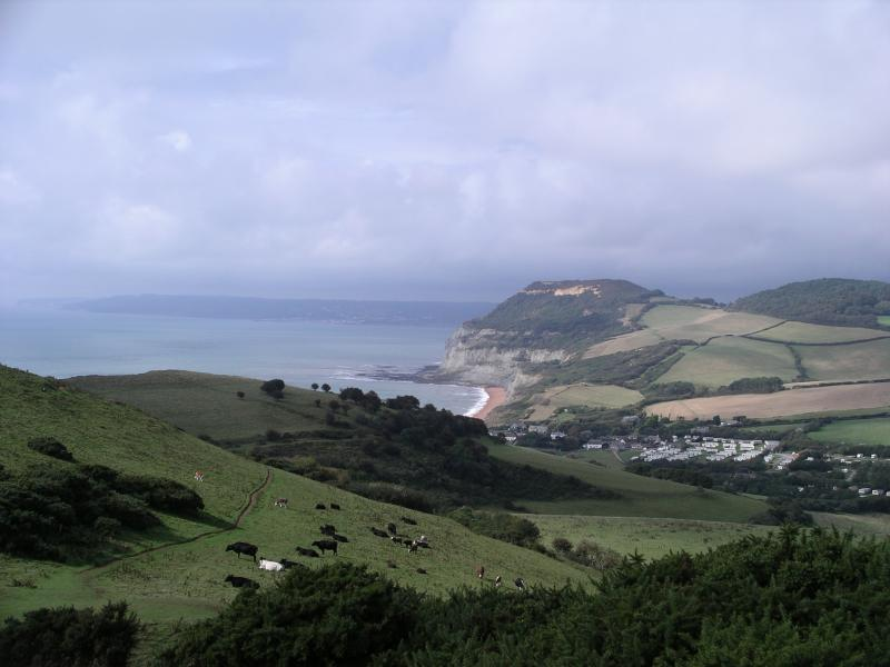 Looking down to Seatown Beach from Eype Down