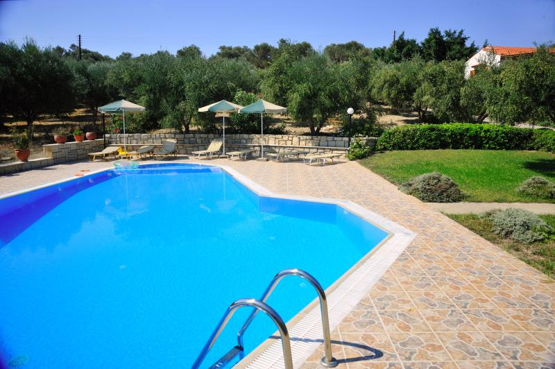 Outdoor area and 80 m2 private swimming pool with sun beds and umbrellas