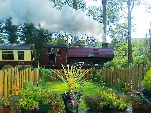 Steam trains pass the end of the garden!