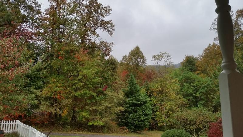 A hint of fall from the porch.