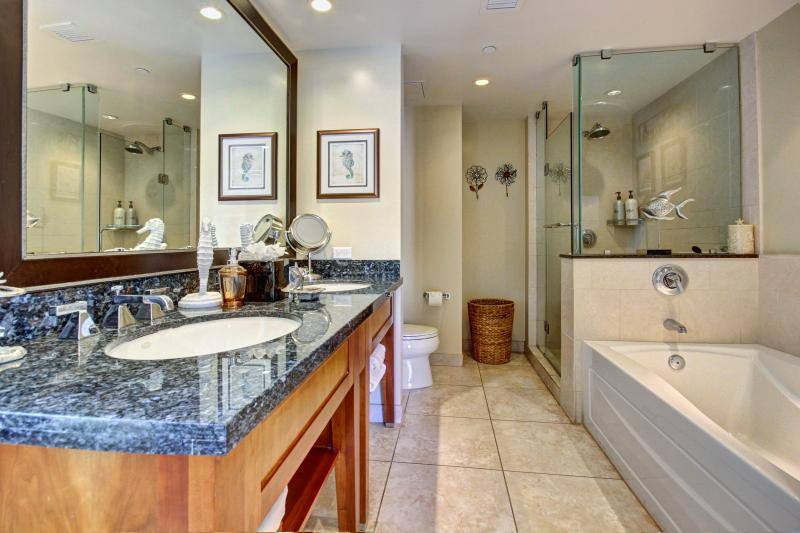2nd large bathroom with private entrance from 2nd master suite and separate entrance from living rm