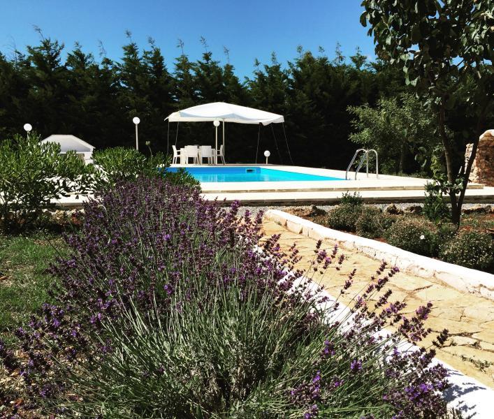 Trullo in Valle d'Itria, holiday rental in La Fica