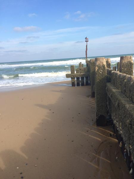 Strand vor der Hütte. Hunde sind erlaubt.