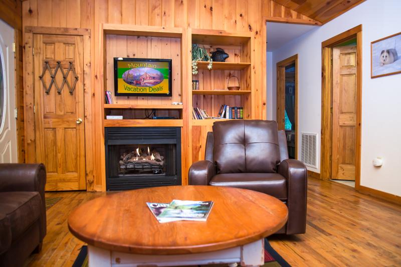 The living room with HD-TV and fireplace