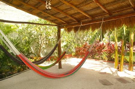 Hammocks in the backyard
