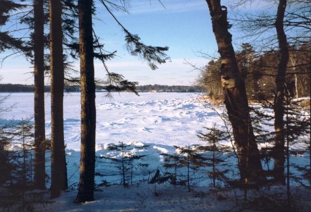 Winter aan de achterzijde van het pand