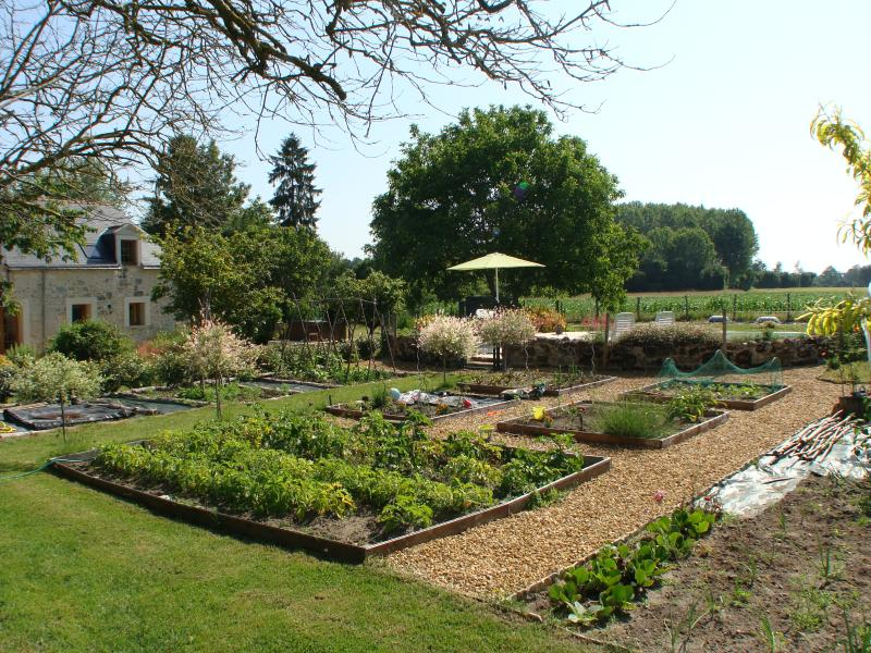 We have a vegetable garden which you are welcome to scrump from!