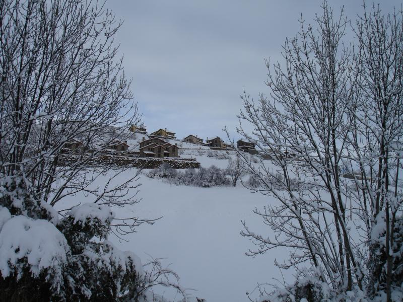 Turismo Rural Castell, Apartamento-2, holiday rental in Bisaurri