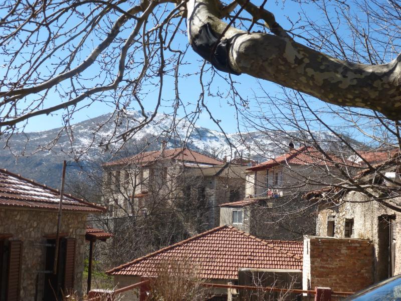 MAINALOΝ MOUNTAIN-TRADITIONAL HOUSE, holiday rental in Arkadia Region
