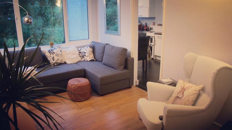 Cosy one bedroom apartment in Windsor town centre, vacation rental in Windsor and Maidenhead