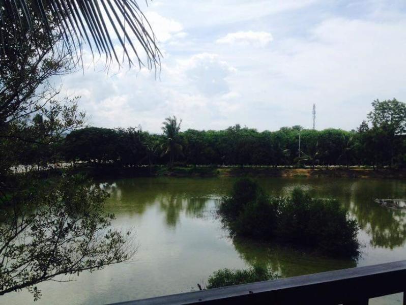 Rainy season -view from the balcony
