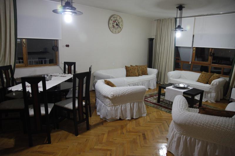 Evodak Apartment D 2, vacation rental in Ankara Province