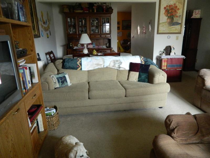 Livingroom regardant dans diningroom.Sleepercouch, des livres, des films, des jeux.