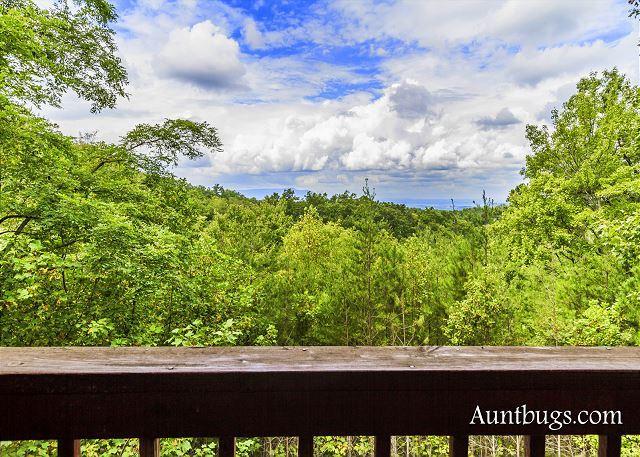Mountain Perch # 2134 - Vue sur la montagne depuis le pont
