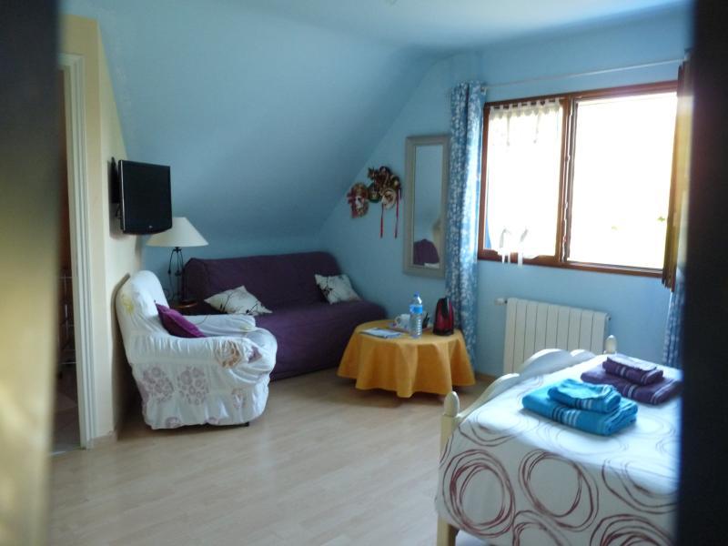 Moneta salone chambre bleue / salotto in camera bleue