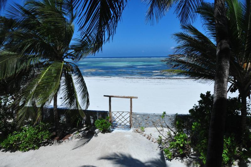 Zanziblue Tangawizi, Oceanfront Private Villa, vacation rental in Matemwe