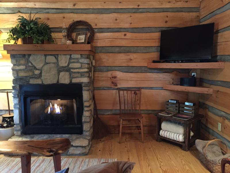 Fireplace, Cable TV, and Bluetooth speaker in the living room