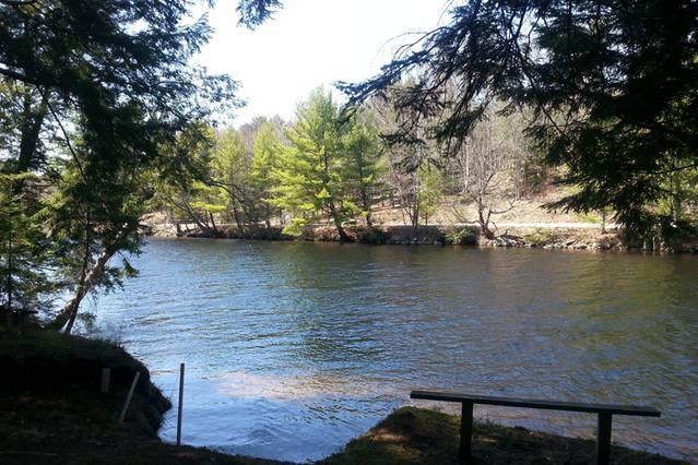 Muskoka River in the Spring