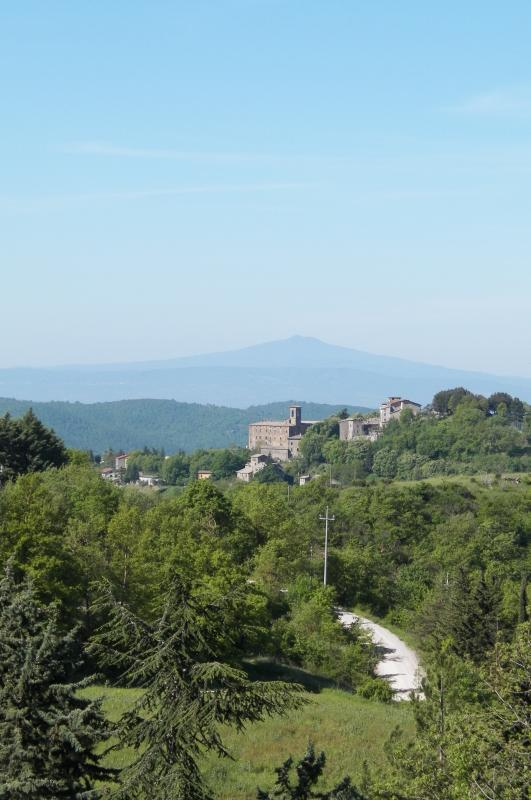 Stunning views of the very pretty, medieval small town of Preggio as seen from the property.