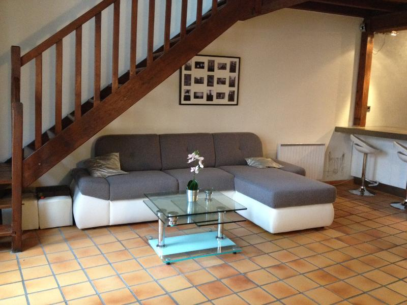 Appartement Type Canuts 75m2, vacation rental in Couzon-au-Mont-d'Or