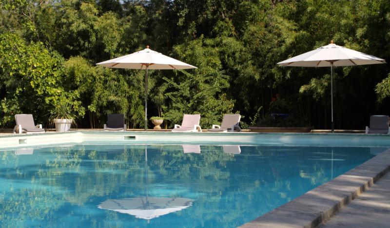 DOMAINE DE LA DRAGONETTE - SUPERBE GîTE 12PERS, holiday rental in Sorgues