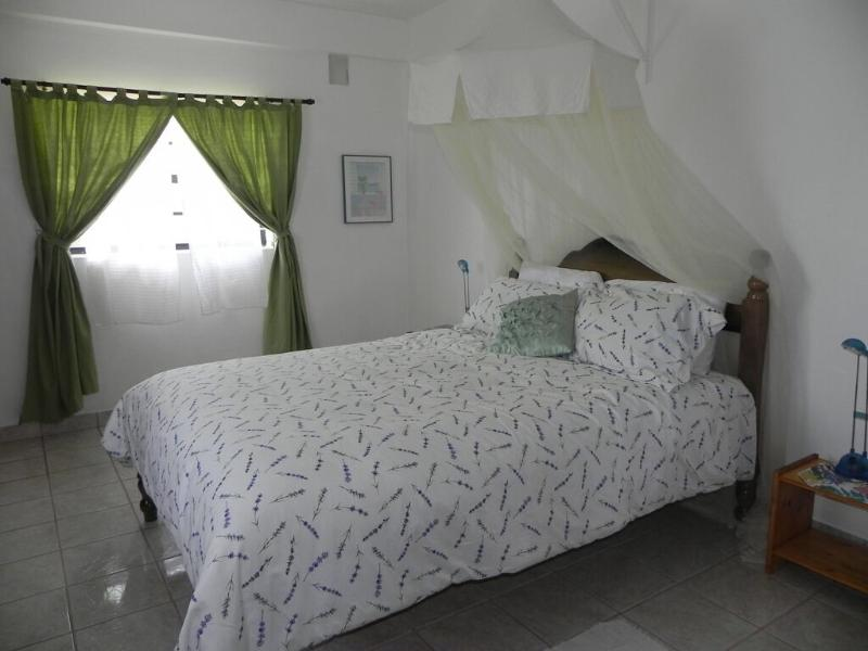queen size bed with mosquito netting