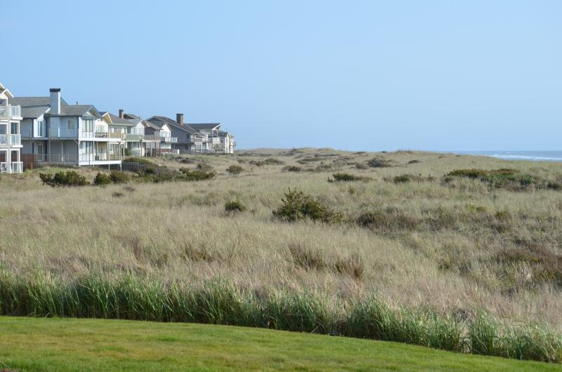 Beautiful view of dunes and ocean!
