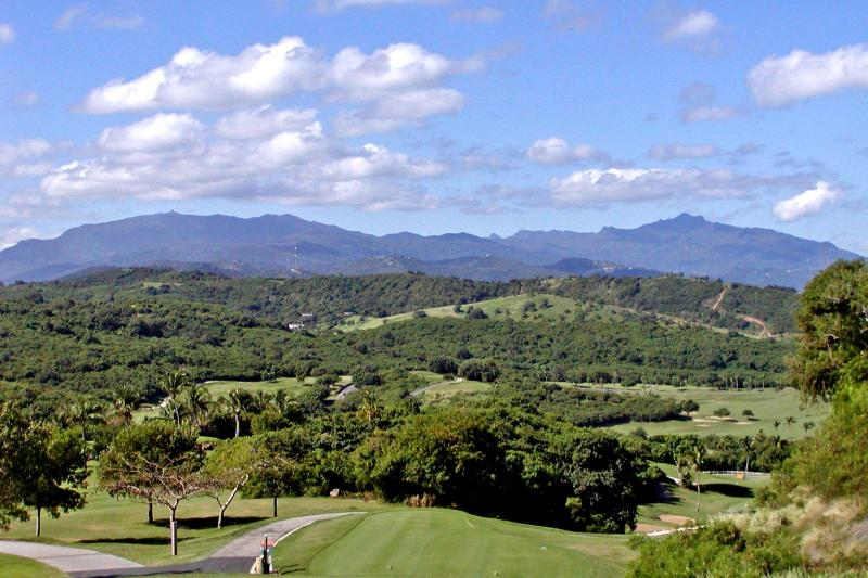 Private Retreat within the borders of the El Yunque Rainforest!